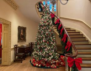 Christmas Tree at Bayou Bend