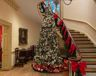 Christmas Tree at Bayou Bend