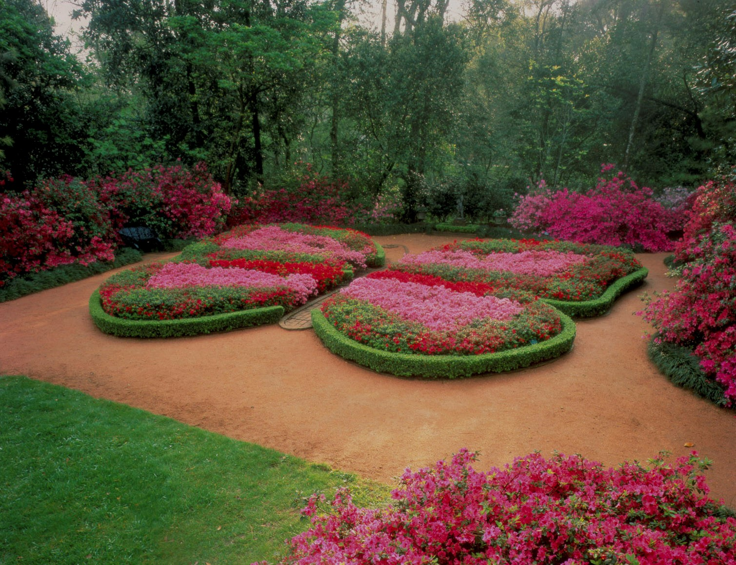 Bayou Bend Gardens Azalea Trail Garden Ftempo