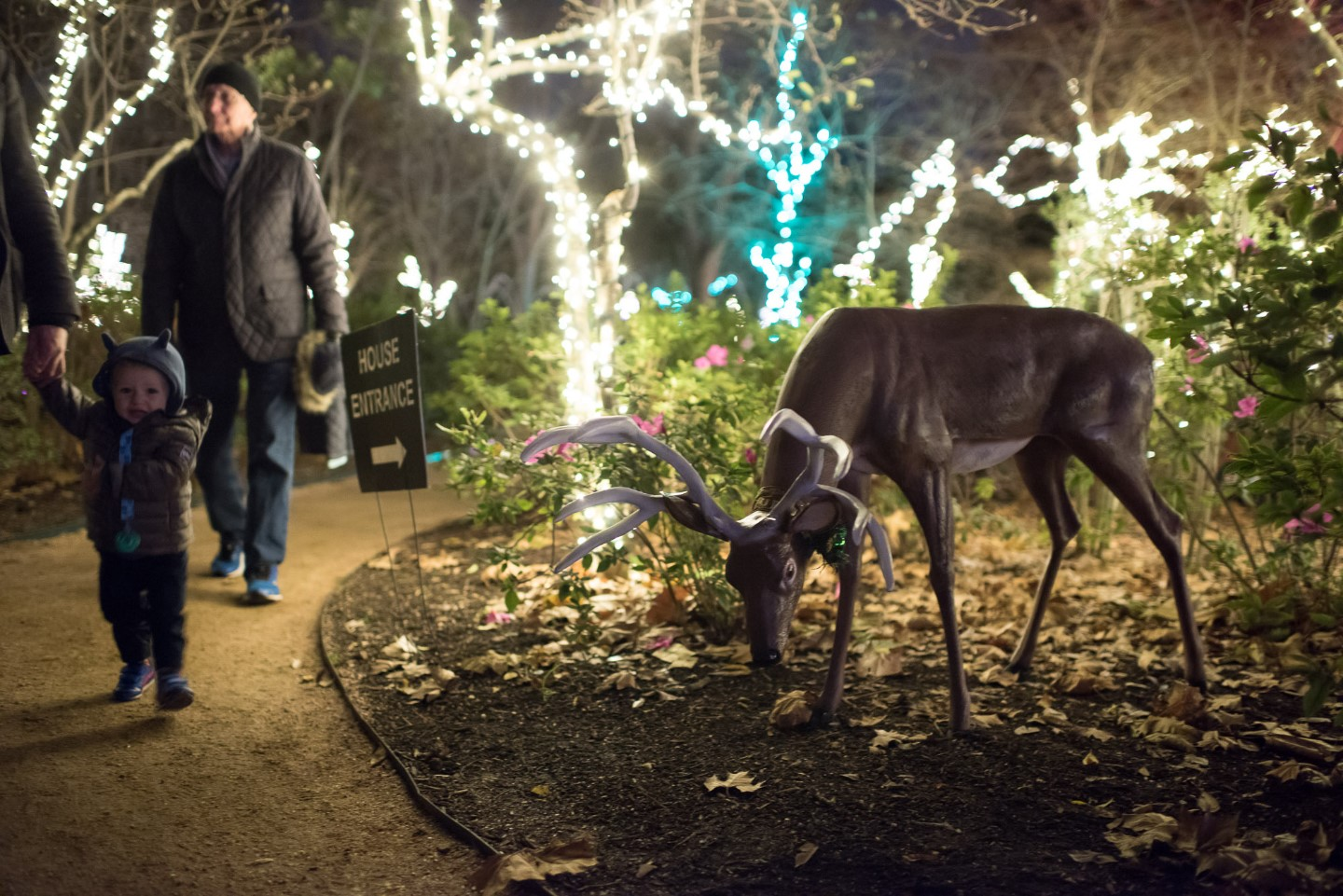Reindeer at Christmas Village at Bayou Bend
