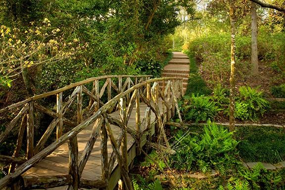Bayou Bend Rick Gardner - bridge