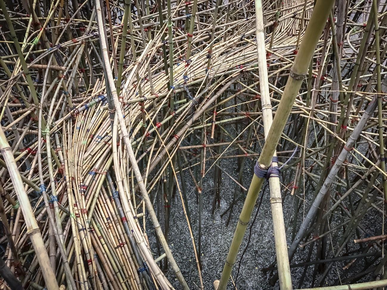 Big Bambu in progress photo by Starn brothers