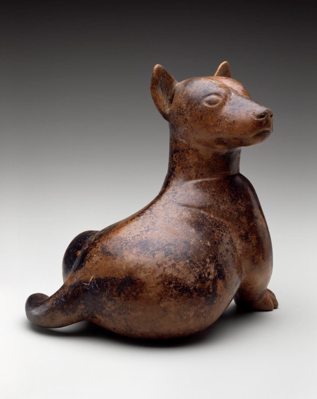 Colima- Dog
