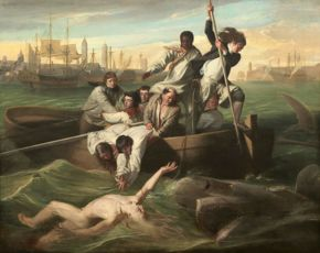 Copley- Watson and the Shark