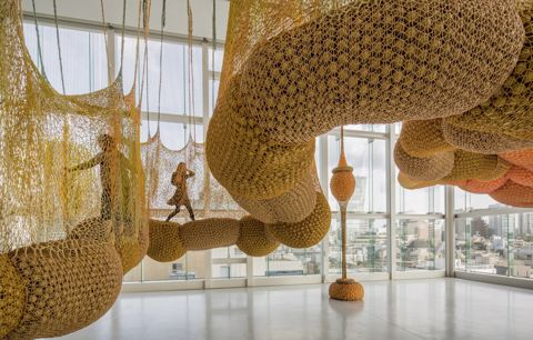 Ernesto Neto, Life is a body we are part of/Madness is part of Life