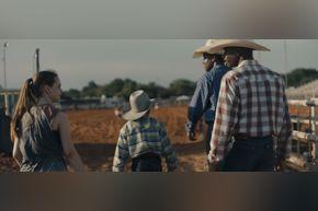 film | Bull