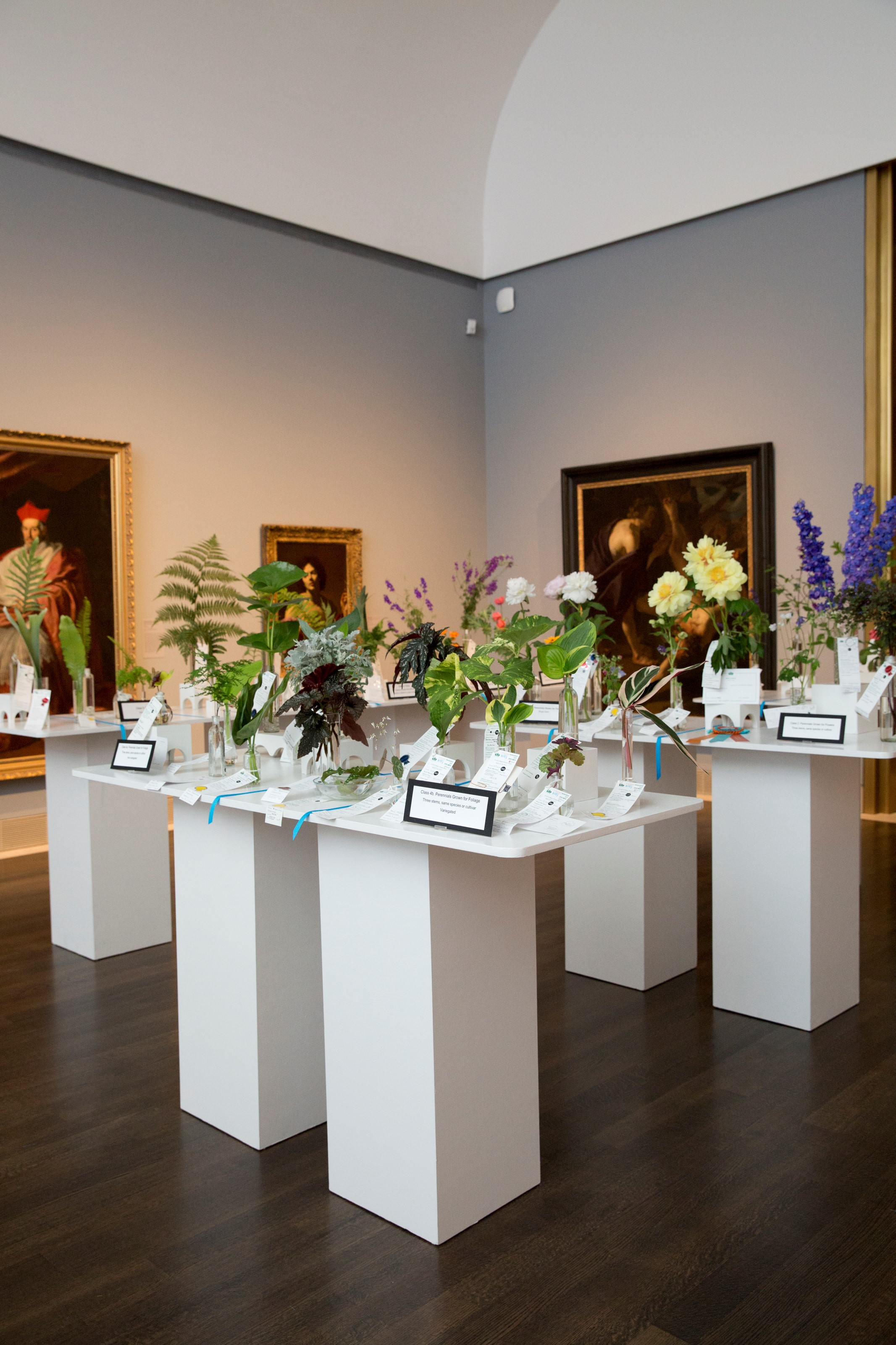 Florescence 2017 - flowers in the galleries