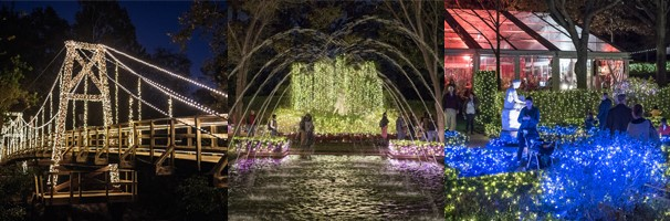 Christmas lights at Bayou Bend