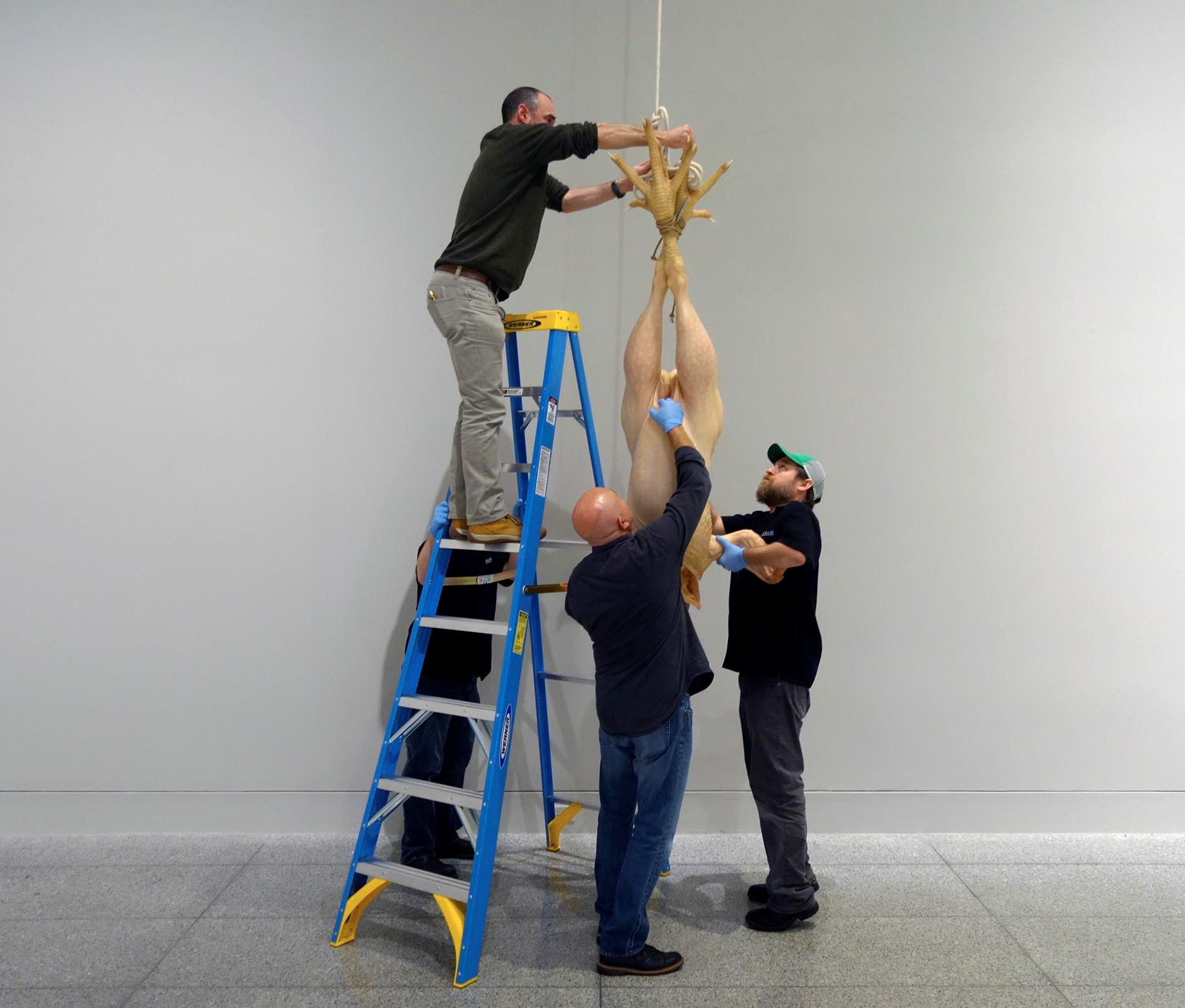 handling ron mueck an interview chief preparator dale for blog post only mueck chicken