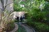 Garden Tours at Rienzi