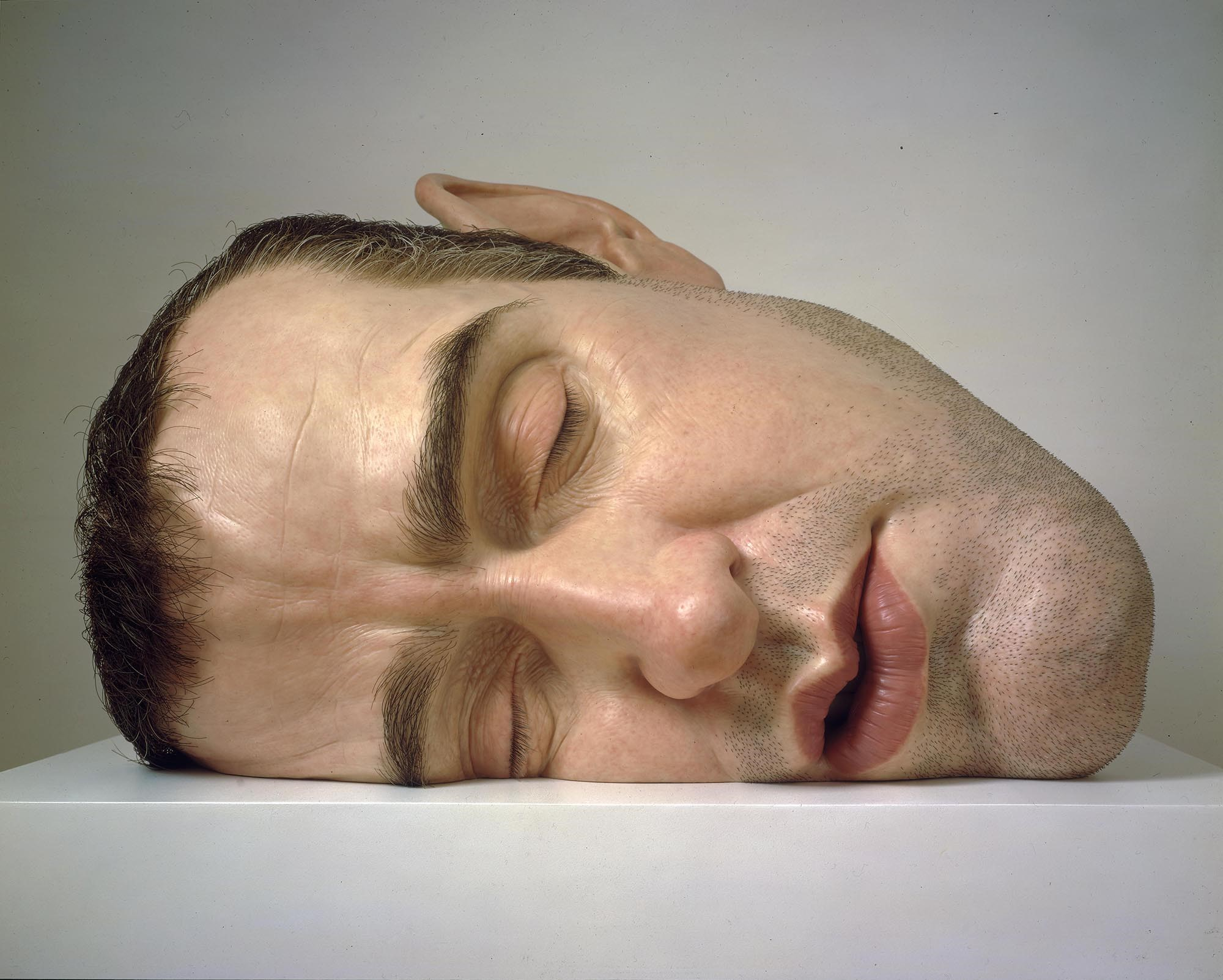 ron mueck the museum of fine arts houston
