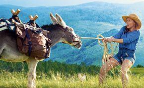 French Film Festival | My Donkey, My Lover & I