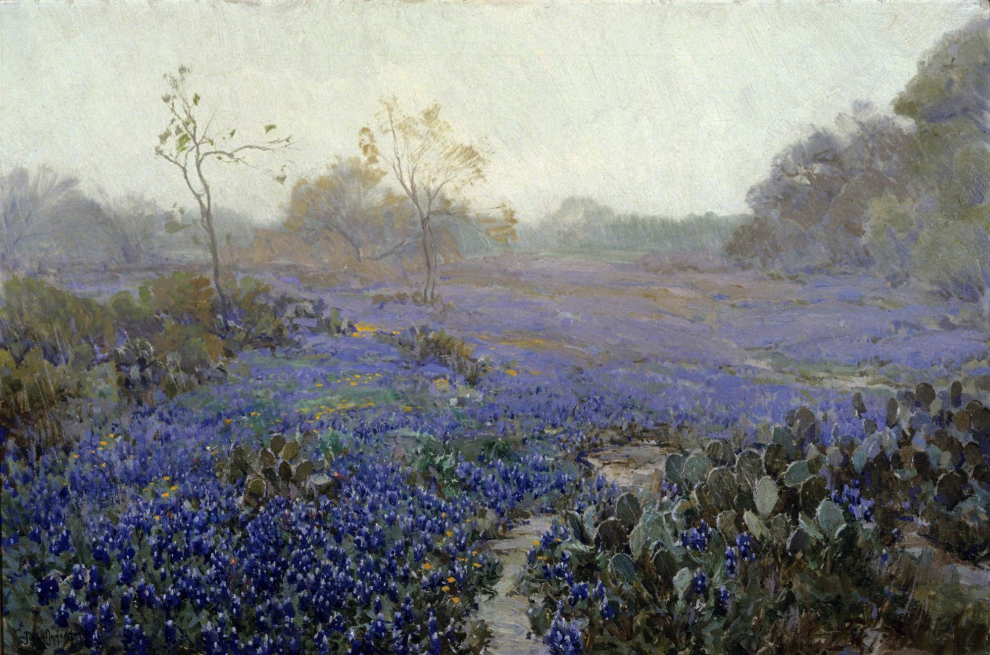 Onderdonk - Blue Bonnets and Cactus