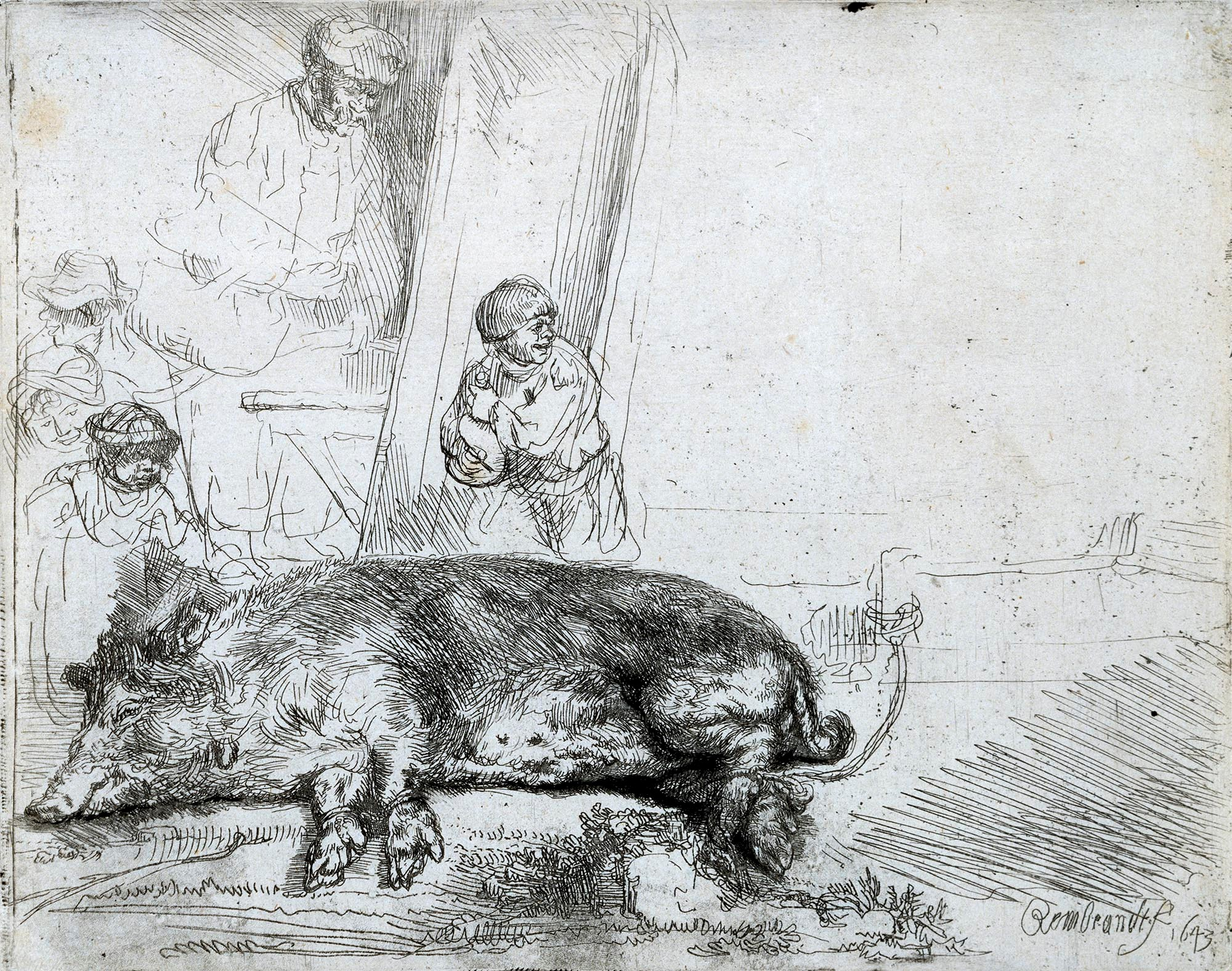 Rembrandt - The Hog