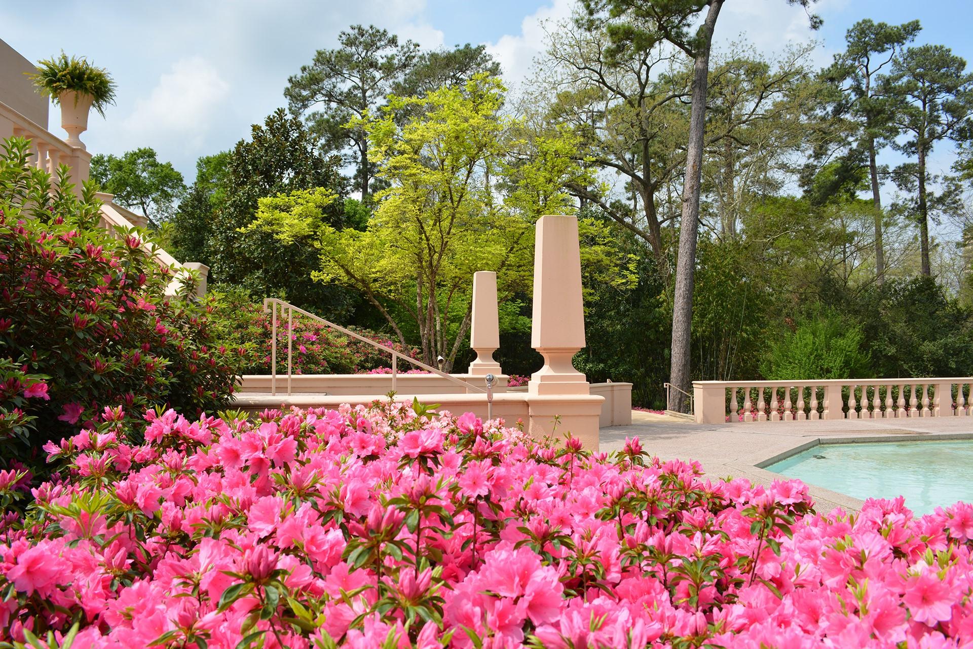 Rienzi - pool / gardens / azaleas