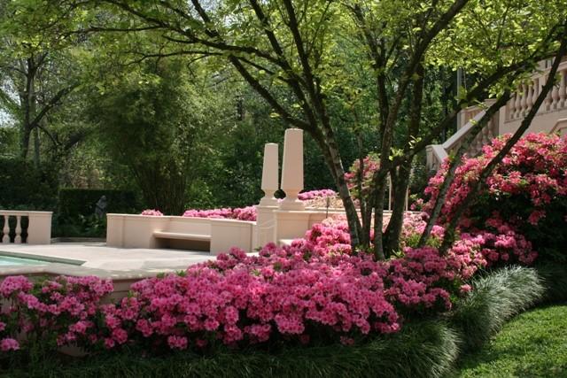 Rienzi Gardens