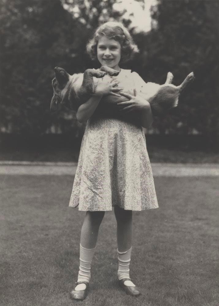 Lisa Sheridan, Queen Elizabeth II with Her Corgi Dookie