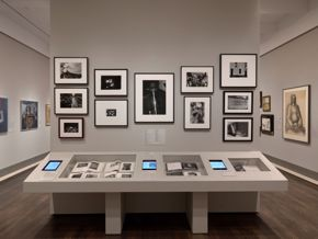 Soul of a Nation | installation view (photography 1)