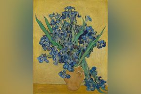 van Gogh - Irises (van Gogh Museum)
