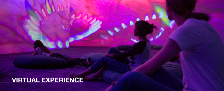 Virtual Experience | May 19
